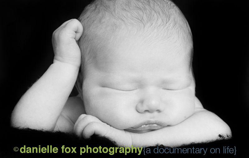Chubby baby as newborn photography danielle fox