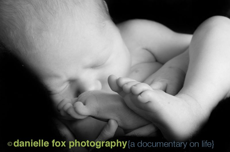 Baby in womb snuggly newborn photography