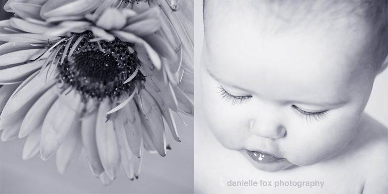 Photography baby, baby portraits