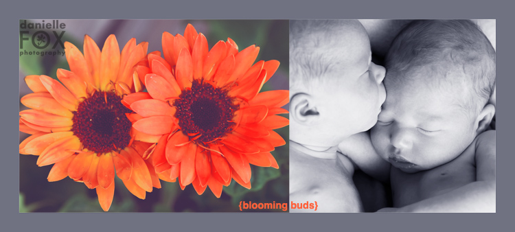 Blooming buds twin love